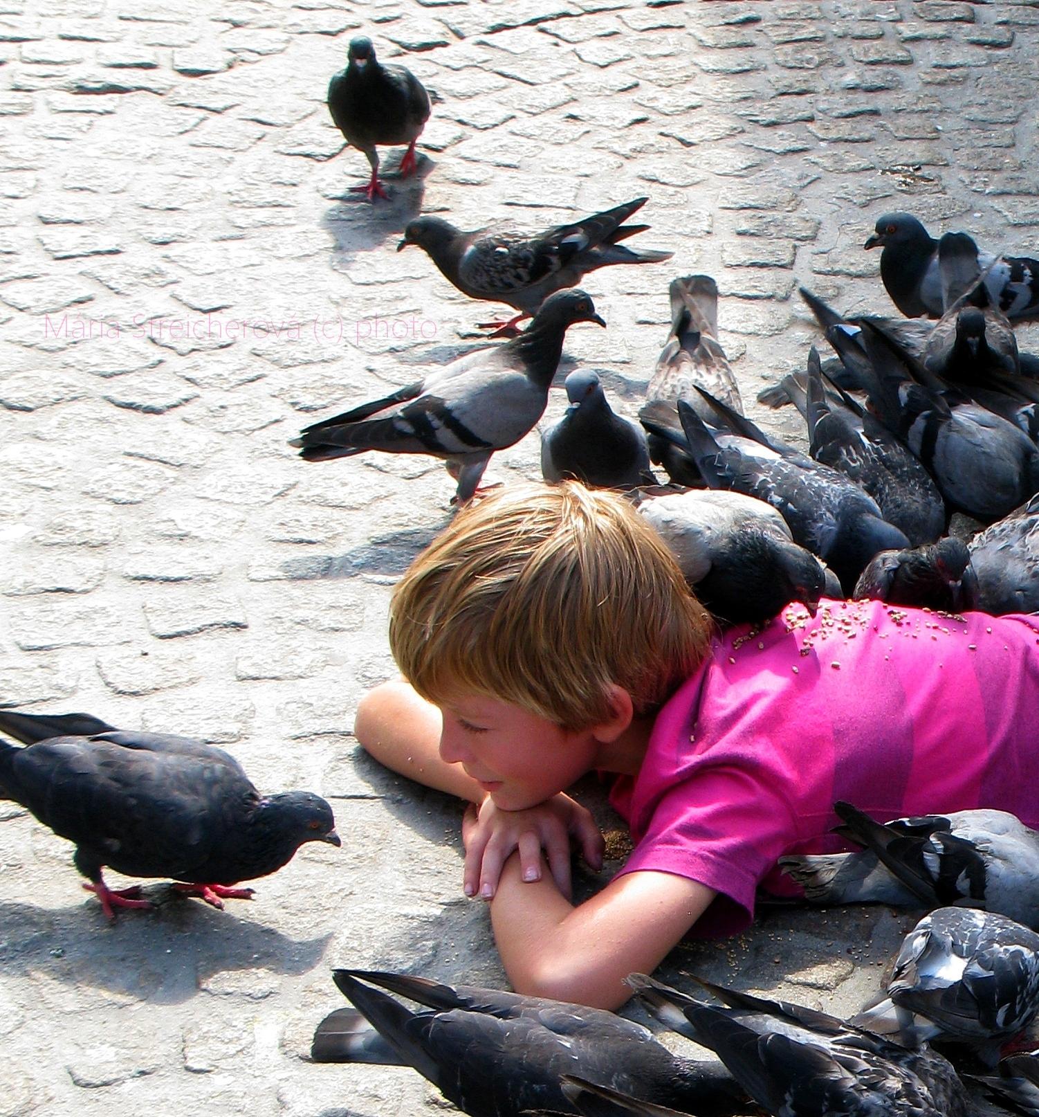 Chlapec ležiaci na bruchu na námestí v Amsterdame. Holuby zobkajúce zrno z jeho chrbáta.