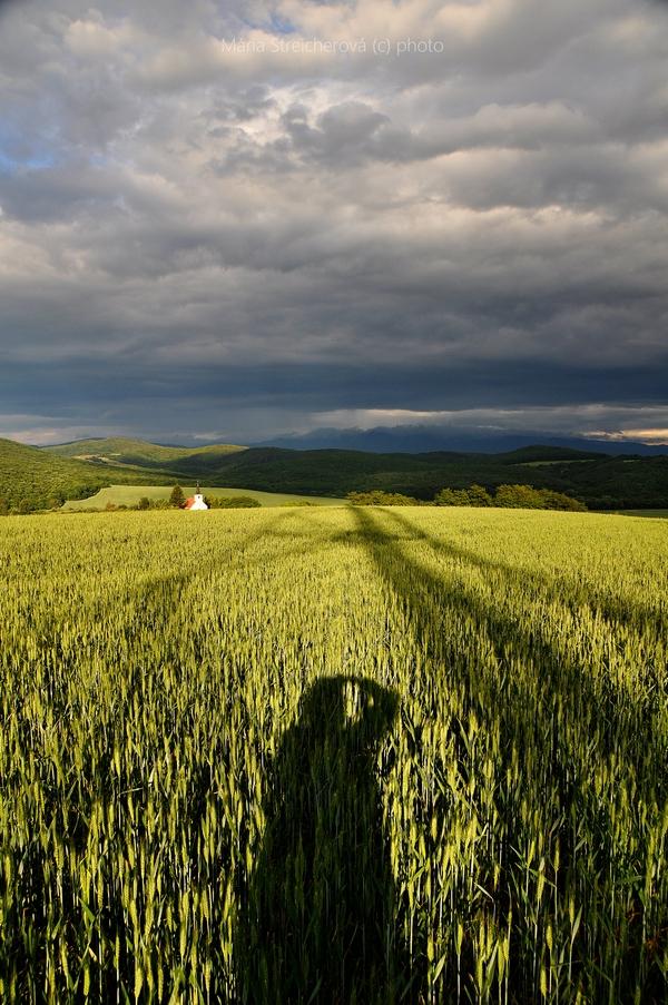 Zelené obilné pole, kostolík a horizont za kostolom nasvietené lúčmi zapadajúceho slnka. Kontrastná zamračená obloha s modrosivými mrakmi. Tiene fotografky a kovovej konštrukcie na poli.