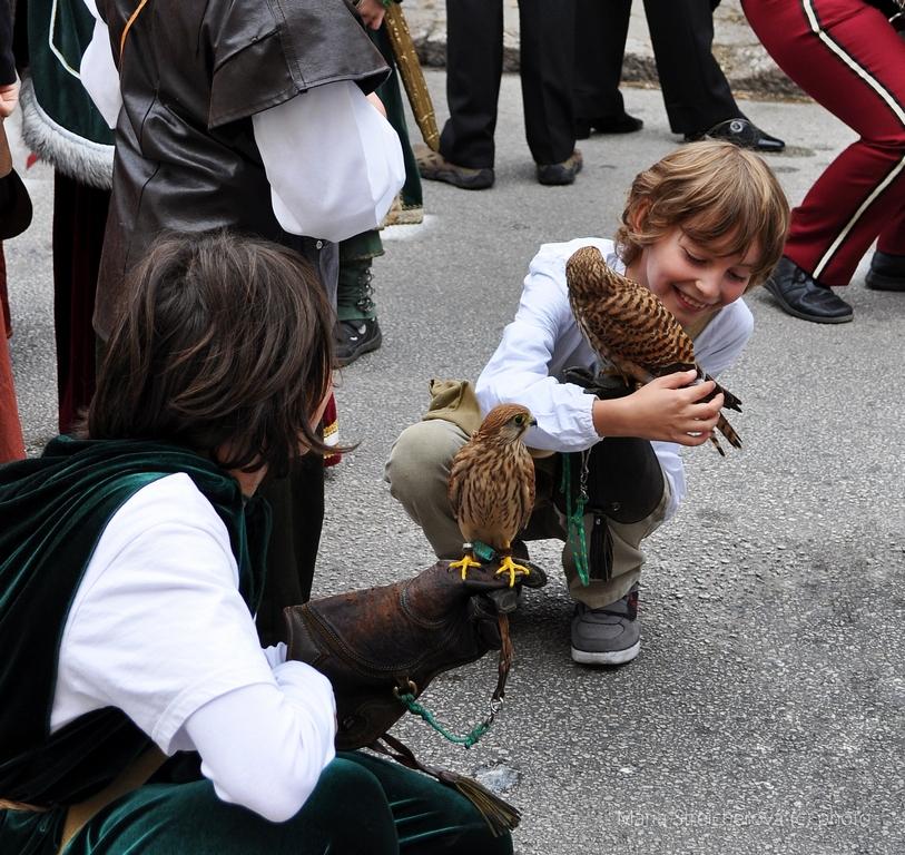Mladí sokoliari so svojimi zverencami.