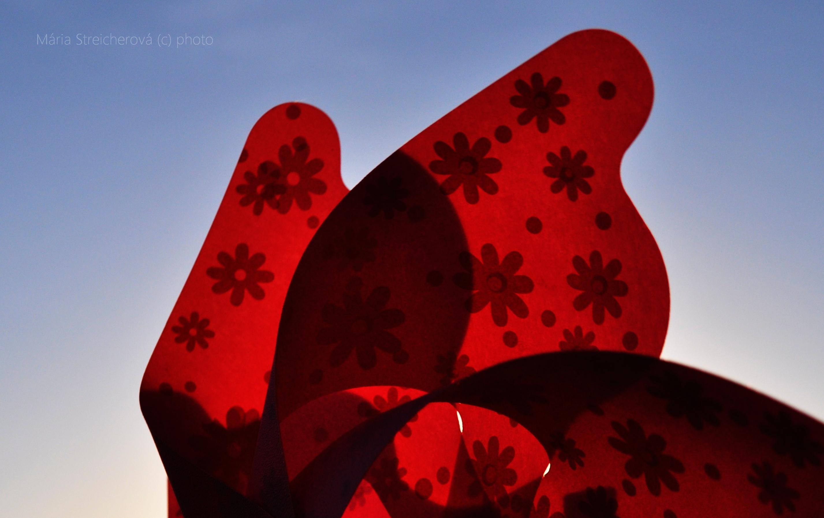 Listy červenej vrtuľky v protisvetle